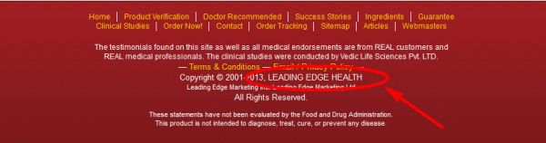 Leading Edge Health - original site's footer