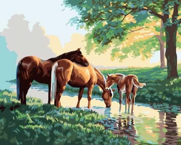 Ilustrasi kuda minum air